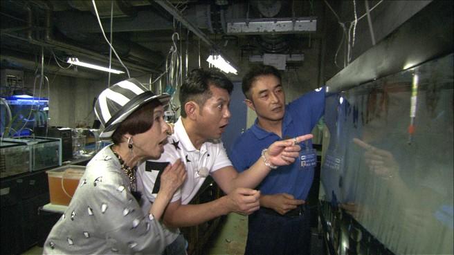 久本雅美さんと的場浩司さんは、何やら水槽を見てビックリの様子