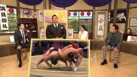 大相撲どすこい研 第7回 小兵編